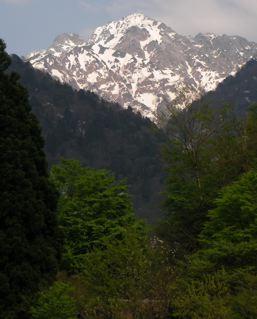 剣岳とコブシの花